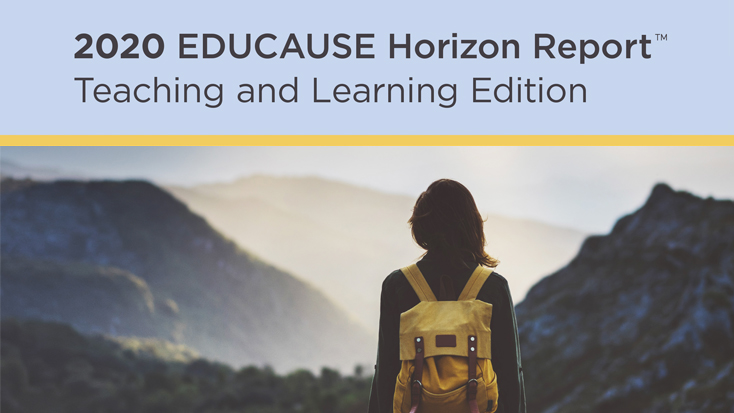 Person looking out over a mountain range: 2020 EDUCAUSE Horizon Report Teaching and Learning Edition